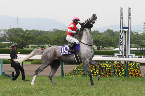 競馬】ゴールドシップの「素顔」に見えた、有馬記念での復活劇|競馬 ...
