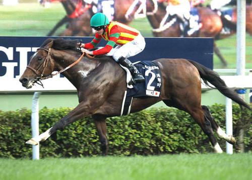 150万円の安馬、モーリスのサク...